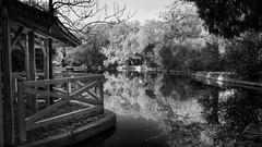 (038/18) El estanque (Pablo Arias) Tags: pabloarias photoshop photomatix capturenxd españa cielo nubes arquitectura bn blancoynegro monocromático estanque lago casa madera agua parque elcapricho madrid
