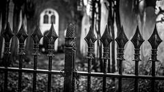 (Nico_1962) Tags: leica zeiss planar leicam zwartwit fence gate hek gouda blackandwhite bw meetzoeker rangefinder dof bokeh nederland thenetherlands