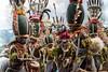 Papua Nuova Guinea, alla scoperta degli ultimi cannibali viventi! (Cudriec) Tags: cannibali huli korowai natura nuovaguinea papua papuanuovaguinea popolo tribù viaggiare