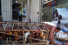 the barber and the butcher (simon-r-) Tags: ethiopia éthiopie äthiopien addis addisababa addisabeba sholamarket market bazaar marché markt 2017 urban butcher barber street city life documentary photography travel people local africa afrique afrika eastafrica afriquedelest ostafrika culture إثيوبيا أفريقيا سوق sony alpha ilce 5000