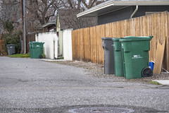 It's Garbage Day! (Thrash 'N' Trash Prodcutions) Tags: trashcans alleyway garbagecans dumpsters alley trash garbage rubbish recycling bins carts container toter cascadecart waste disposal wm wastemanagement