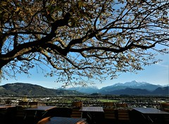 dining with a view (SM Tham) Tags: europe austria salzburg hohensalzburg fortress castle restaurant dining terrace tree tables chairs view landscape mountains countryside outdoors