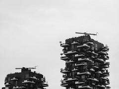 Milan, Italy (Márton Botond) Tags: milan milano lombardy lombardia italia italy europa cityarchitecture city cityscape blackwhite botanaveritcale travel panasoniclumixdmclz20