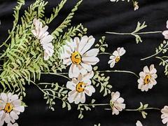 026 Daisy, swatch (QQ5XCZAU6OKQMU7MCICHIN4N3X) Tags: 2012 ruby leonaedmistonruby leonaedmiston australiandesigner daisy floral black white green fern nonstretch viscose daisies bouquet ferns leaves lookbook
