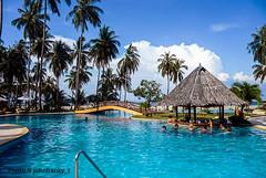 A moment of relaxation-Phi Phi Island-Thailand (johnfranky_t) Tags: palme cocco johnfranky t tz5 piscina ponte ombrelloni oceano indiano bar bridge pool puente paraguas zona tropical mirador gazebo belvédère lumix panasonic nuvole clouds nubes azzurro azul