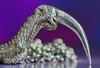 silver talon (sure2talk) Tags: macromondays lessthananinch silvertalon barnowl silver barnowltalon necklace chain shallowdof bokeh macro closeup nikond7000 nikkor85mmf35gafsedvrmicro