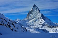 Matterhorn-180106-012-Bernard-Grua (Photos de voyages, d'expéditions et de reportages) Tags: montagne moutain cervin matterhorn switzerland winter bernardgrua bluehour snow zermatt valais hautvalais wallis oberwallis