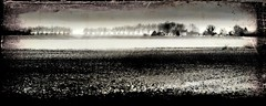 Horizon d'hiver. (*Jost49*) Tags: france paysdelaloire paysage landscape panorama campagne countryside nb bw monochrome texture canoneos6dmkii canonef24105lis inexplore