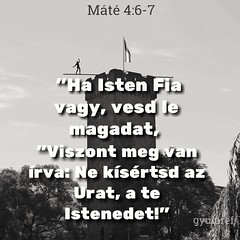 #bible #quotes #God #faith #praying #christ #Christianity #mercy #grace #graceful #instadaily #instaquote #inspiration #quotesdaily #napiige #lelkiseg #isten #szeretet #inspiracio #gyularef #bible #quotes #God #faith (mezeine.banyai) Tags: lelkiseg isten inspiration god faith mercy inspiracio quotes gyularef napiige bible szeretet instadaily quotesdaily graceful praying instaquote christianity grace christ