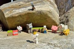 Block Tactics (059/365) (robjvale) Tags: nikon d3200 adventurerjoe lego project365 minecraft blocks tnt pig sheep leopard cow wolf skeleton games