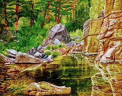 Rocks Reflecting in the Water (happyespi17) Tags: reflection summer painting oiloncanvas oil art atlantaartist cubanartist forest nature landscapeart landscape