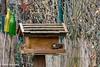 Dinner for One (Günter Hentschel) Tags: garten garden unsergarten 2018 1 januar fütterung vogelhaus hunger natur vogel deutschland germany germania alemania allemagne europa nrw nikon nikond5500 d5500 hentschel flickr outdoor holz spatz wildvögel one dinnerforone