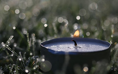 Macro Mondays - Flame (that Geoff...) Tags: macromondays flame tealight grass lawn garden jardin macro closeup frost bokeh canon 70d light melting candle wax