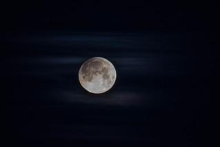 Coucher de lune bleue/Blue moonset-10922