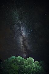 The Milky Way [08.20.17] (Andrew H Wagner   AHWagner Photo) Tags: 5dmk3 5d3 5dmkiii 5dmarkiii 5dmark3 rokinon 14mm f28 rokinon14mm ultrawideangle wideangle outdoors explore exploration exploring hiking nature trees tree mountain valley landscape forest woods longexposure astrophotography astronomy nightscape nightlife nighttime stars night sky highiso lightpainting monongahelanationalforest monongahela nationalforest georgewashingtonnationalforest georgewashingtonandjeffersonnationalforests lookout overlook germanyvalley alleghenymountains spruceknobsenecarocksnationalrecreationarea germanyvalleykarstarea wv westvirginia