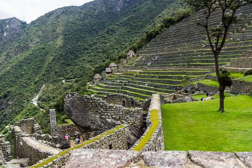 Machu Picchu 77