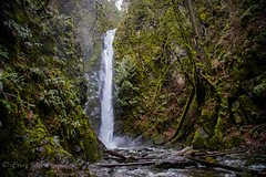 GoldStream Falls (Every Day Images) Tags: goldstream erniedickey explore forest rainforest canada canon calm travel britishcolumbia vancouverisland