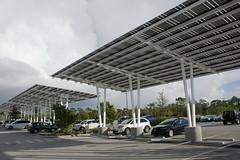 solar panels over parking lot (ucumari photography) Tags: ucumariphotography naples florida fl zoo january 2018 solarpanels parkinglot dsc5965