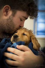 A Boy and His Dog if Only for a Day (Explored) (capers66) Tags: puppies dog boy pet sadness parvovirus love aboyandhisdog canon5dmarkiv newengland newhampshire tenderness
