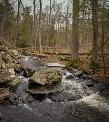 Tricky stream crossing (Dave Landry) Tags: winter northamerica flickr hiking westmilford newjersey places unitedstates pequannockwatershed twobrookstrail passaiccounty america us usa unitedstatesofamerica