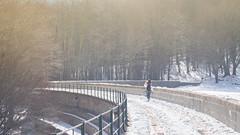 Disfrutando el camino (M.P.Escudero) Tags: woman walk snow bridge alone mountain landscape winter cold happy hapiness montseny mujer sola caminando camino nieve nevado paisaje frio solitario blanco perspective perspectiva puente
