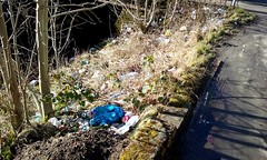 Kirkintilloch's Litter Problem. (Paris-Roubaix) Tags: kirkiintillochs litter problem lammermoor road filth rubbish