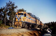 3218 N1872 N1877 Jarrahdale Branch 16 July 1982 (RailWA) Tags: railwa philmelling westrai 1982 n1872 n1877 jarrahdale branch