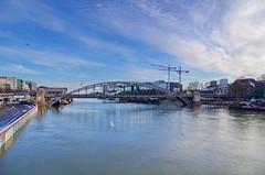 270 Paris en Février 2018 - le Viaduc d'Austerlitz (paspog) Tags: paris france inondation crue seine février flood february februar 2018 viaducdausterlitz