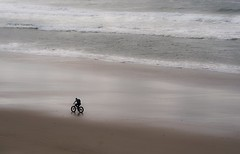 tread lightly... (Alvin Harp) Tags: pacificocean pacificcoast us101 pacificcoasthighway sandybeach bicycling newport oregon november 2017 sonyilcea9 fe70200mmf28 naturesbeauty mountainbike alvinharp