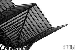 Day 2 (17761) Tags: lisboa portugal pt roof station train calatrava santiagocalatrava lines negativespace white blackandwhite bw architecture cityscape city monochrome
