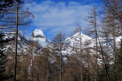 Ovronnaz (bulbocode909) Tags: valais suisse ovronnaz montagnes nature arbres mélèzes forêts hiver neige nuages bleu paysages