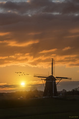 Warm sunrise (lybil) Tags: leidschendam kinderdijk netherlands unescoworldheritage sunset windmills sky silhouette tower landscape city sun architecture nature technology clouds skyline business environment blue travel orange tourism sunrise steel view antenna background building power