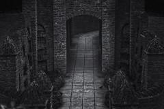 doorway (adamtambaro) Tags: nikon3400 nikon white winter blackandwhite black blackwhite london londonstreets light lights londontown surrey streetphotography guildford