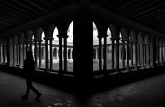 (cherco) Tags: lonely solitario solitary silhouette shadow silueta sombra street composition composicion canon columnas columns arch arquitectura architecture cloister claustro france francia blackandwhite blancoynegro light repetition repeticion monochrome