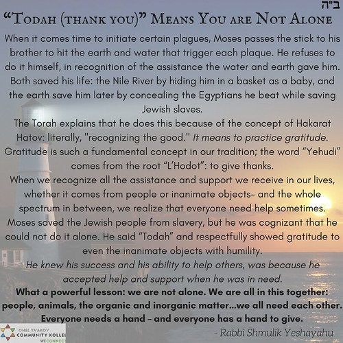 """""""Todah (thank you)"""" Means You are Not Alone"""
