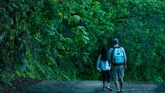 Waipio (23) (BoyUtot) Tags: waipiovalley waipiofalls waimea surfing hiking trekking dronephotography mavic panasonicgh1 hawaii bigisland lumix 100300mm travel nature landscape seascape honokaa ramesesmendoza