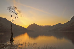 Buttermere at sunrise (Benjaminio) Tags: buttermere lake reflections mirror sunrise sky orange mountains tree nature lakedistrict water lone winter morning
