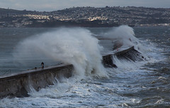 Is it worth the risk? (Robin M Morrison) Tags: brixham breakwater waves dangerous danger storm easterly gales