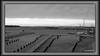 Further 1 of 4 winter depression photos of the nature (6) (andantheandanthe) Tags: melancholy gloomygloomyness winter dull dark gloom melancholic sad rainy cloudy terrible depression depressing glooming dispirit downhearted grey fiskebäck marina harbour harbor piers boats