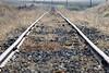 Morning Tracks (maberto) Tags: d7200 nikon tracks vanishingpoint weeds ©bradmaberto eldoradocounty traintracks rails landscape