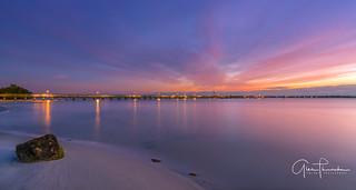 Florida Life: Rocky Shoreline