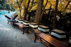 Busan street (debbykwong) Tags: busan korea park streetincolor streetcaptures streetphotography streetmoment streetmood koreadiscovery travel travelphoto peopleonthestreet leica storyofthestreet leicaq leicaqtyp116 leicacamera leicaphoto