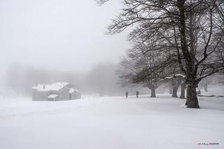Nieve, frío y niebla