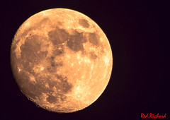 Moon (red.richard) Tags: moon full night sky space craters