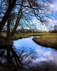 Never ending! (boppin.mule) Tags: bluesky clouds sky 天 荷兰 nederland netherlands rural countryside 木 colorful reflections water river 河 自然 风景 trees tree landscape nature