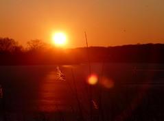 sunrise (BrigitteE1) Tags: sunrise sonnenaufgang unbearbeitet unprossecesd see lake sonne sun