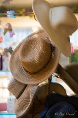 Straw Hats (Roy Prasad) Tags: car automobile sanjose auto carshow prasad royprasad sony a7r a7rm3 convention opulence luxury expensive