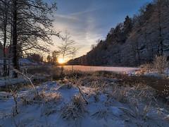 Snowy Sunset II (SGarriott) Tags: sgarriott scottgarriott olympus omd em5ii 714mmf28 landscape norway norge winter vinter cold snow snø ice is sunset solnedgang pond lake kristiansand