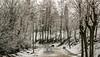 240A3967 (JoseFuko8) Tags: nieve fuentesauco zamora paisajes nevada invierno canon 7d mark ii pueblo campo
