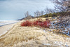 Winter's Colors (Herculeus.) Tags: 2018 jan mi saugatuck winter southfield usa bench clouds day dunes flowersplants hills horizon ice lake lakemichiganmi landscape landscapes outdoor outdoors outside red sand shoreline snow water michigan grass tree sky